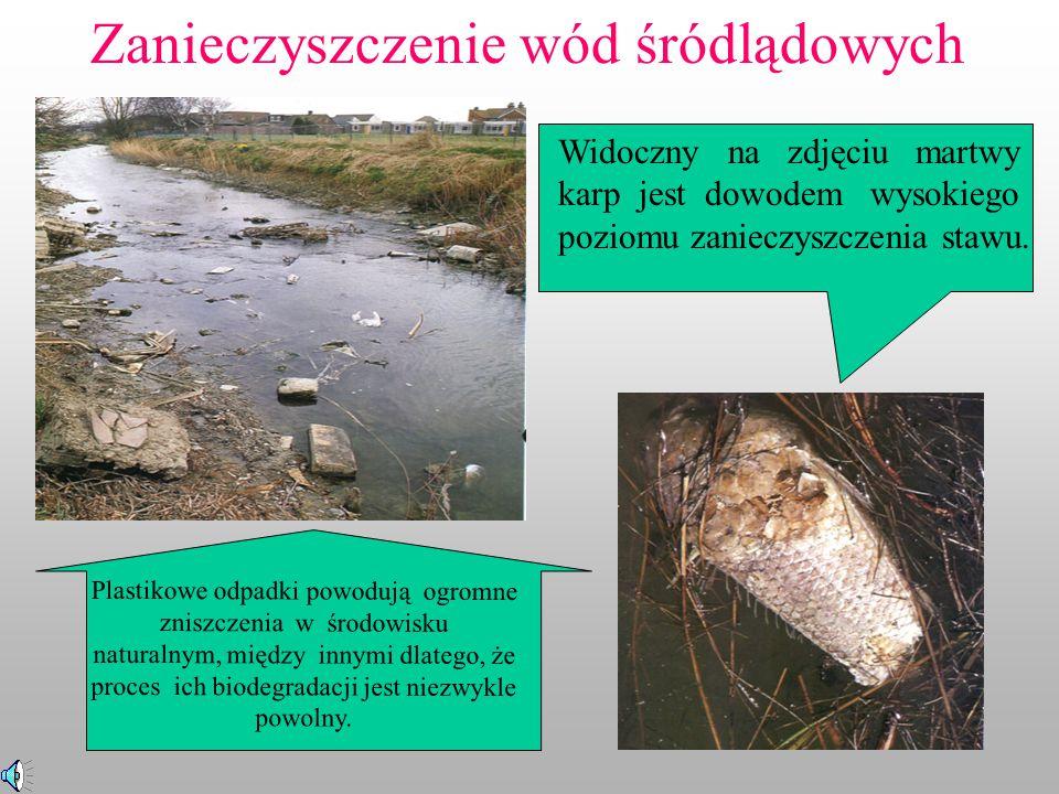 Zanieczyszczenie wód śródlądowych