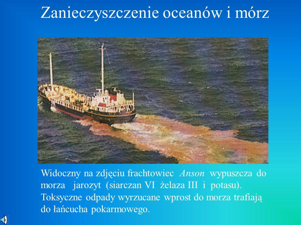 Zanieczyszczenie oceanów i mórz