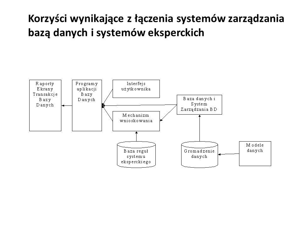 Korzyści wynikające z łączenia systemów zarządzania bazą danych i systemów eksperckich
