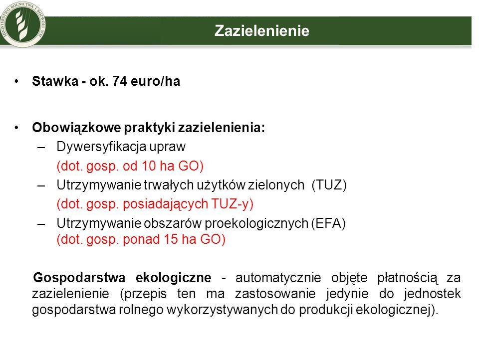 Zazielenienie Stawka - ok. 74 euro/ha