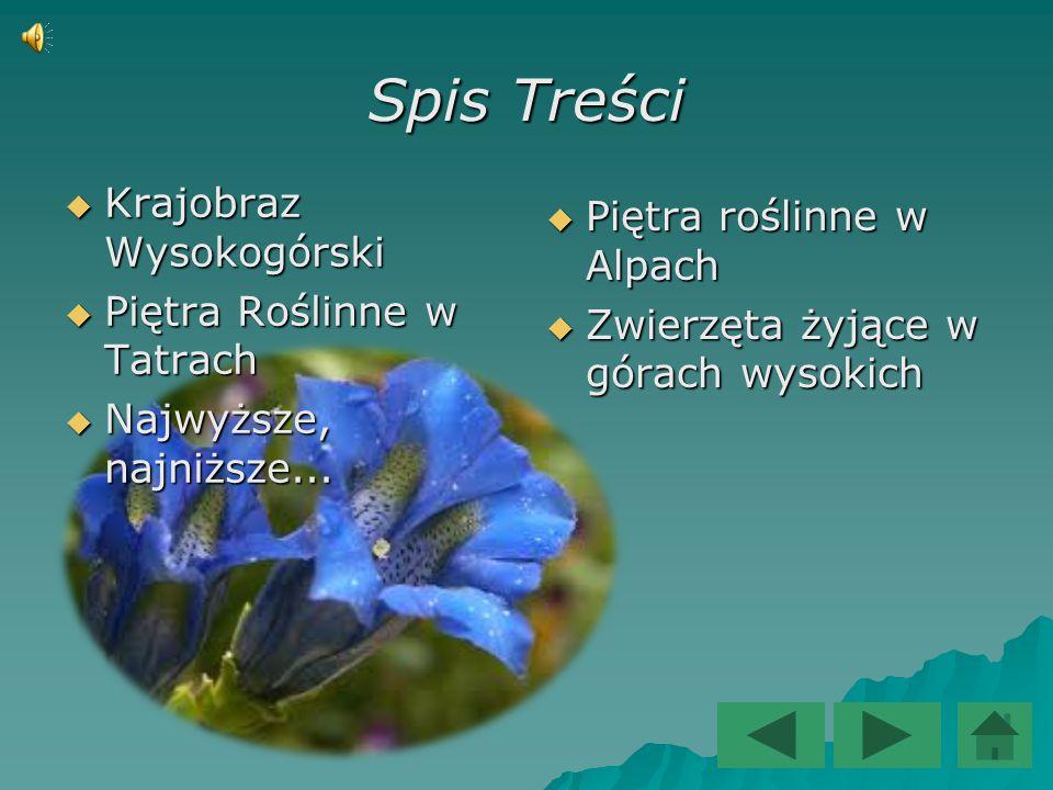 Spis Treści Krajobraz Wysokogórski Piętra roślinne w Alpach