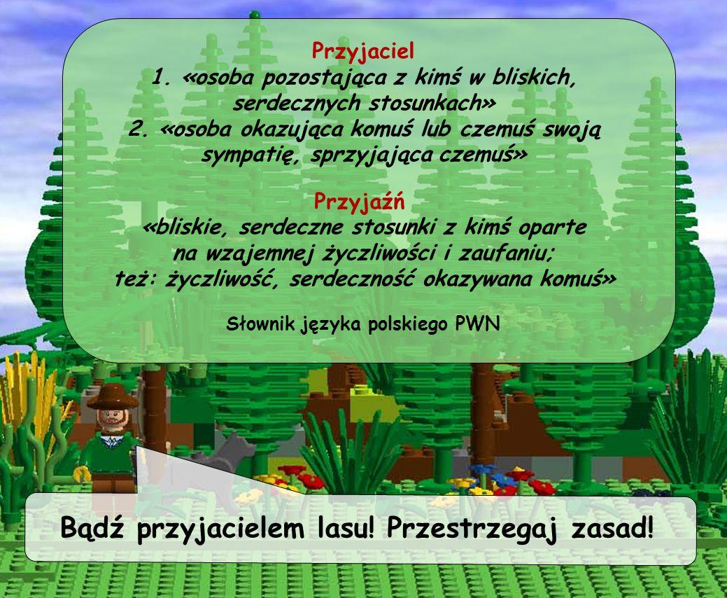 Bądź przyjacielem lasu! Przestrzegaj zasad!