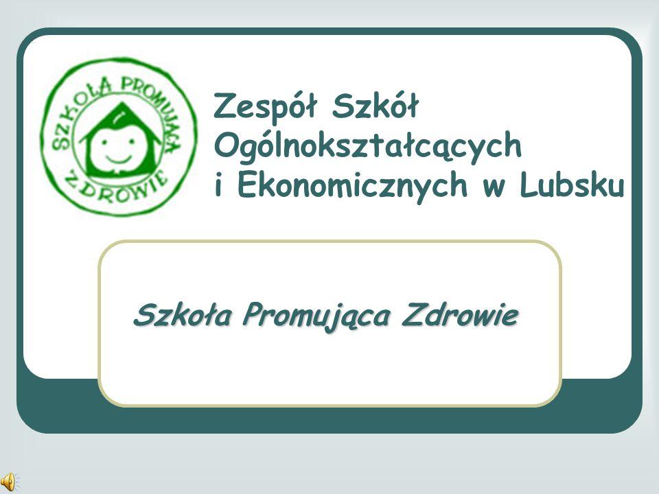 Zespół Szkół Ogólnokształcących i Ekonomicznych w Lubsku