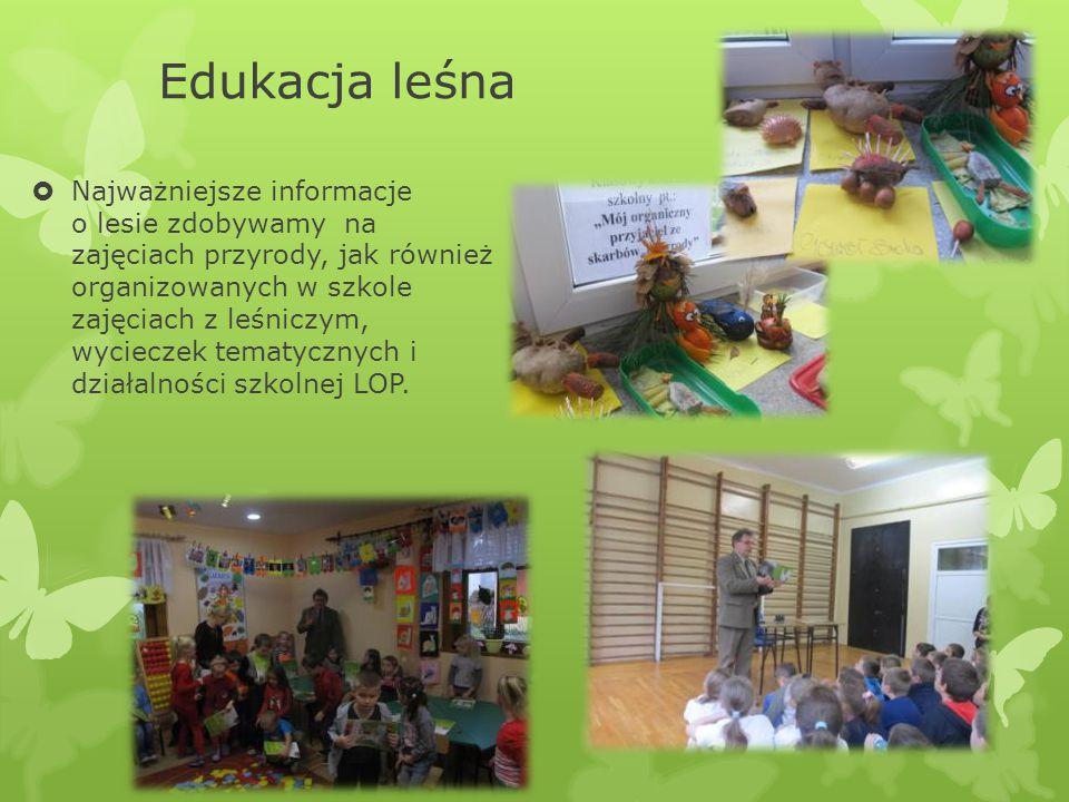 Edukacja leśna