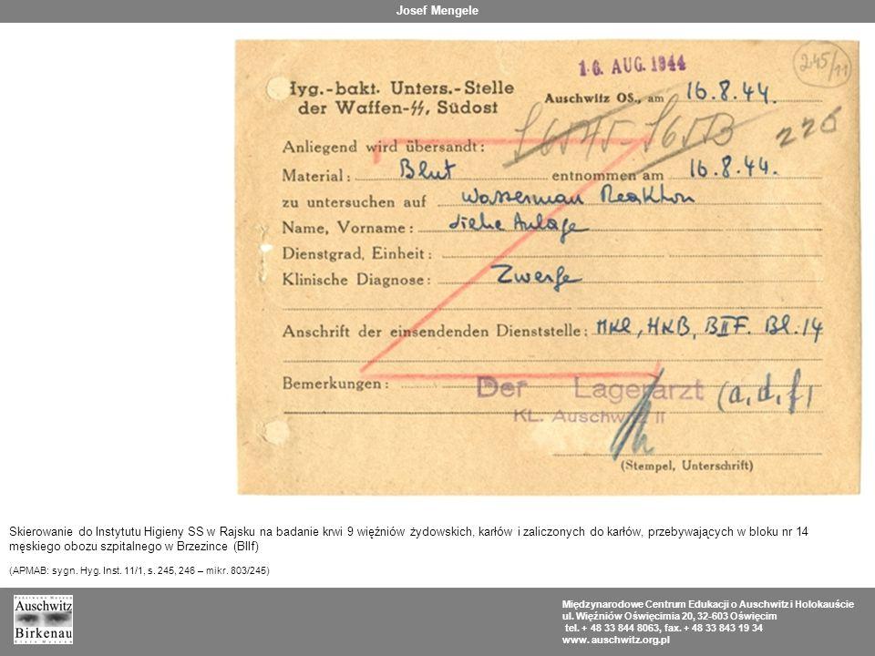 męskiego obozu szpitalnego w Brzezince (BIIf)