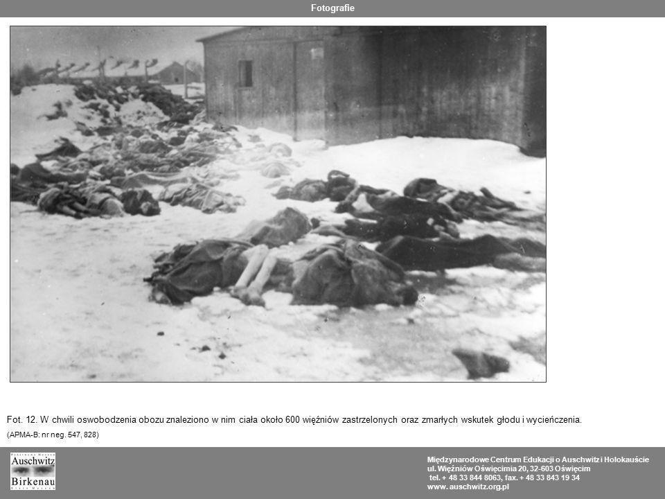 Fotografie Fot. 12. W chwili oswobodzenia obozu znaleziono w nim ciała około 600 więźniów zastrzelonych oraz zmarłych wskutek głodu i wycieńczenia.
