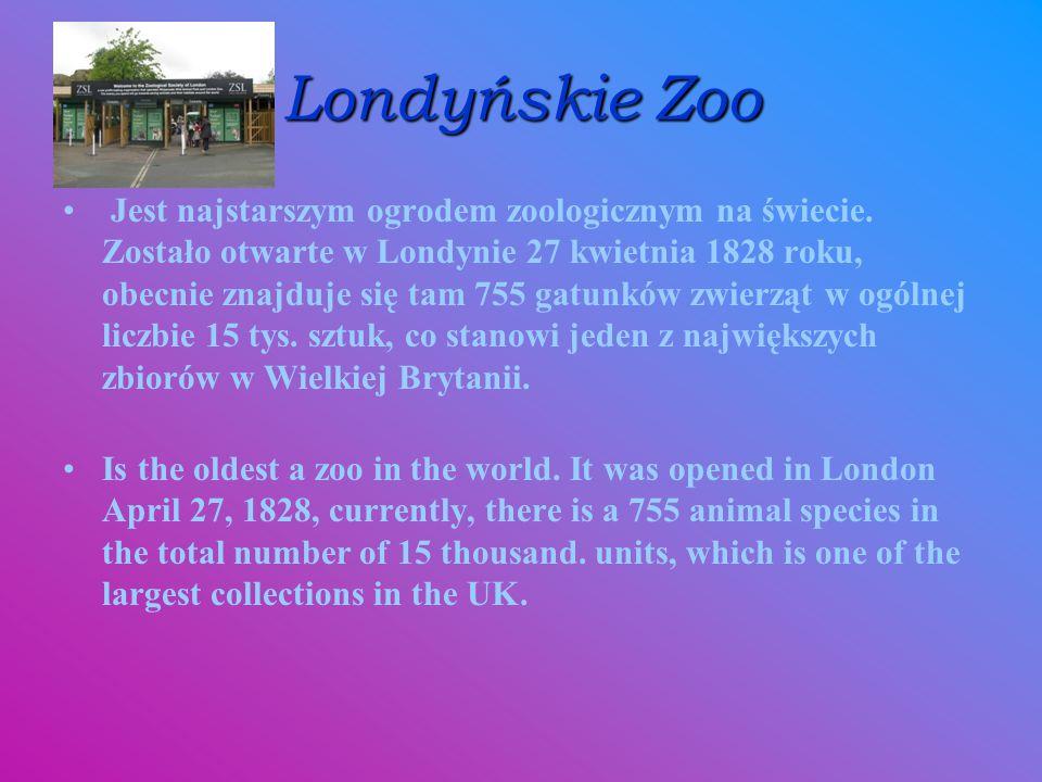 Londyńskie Zoo