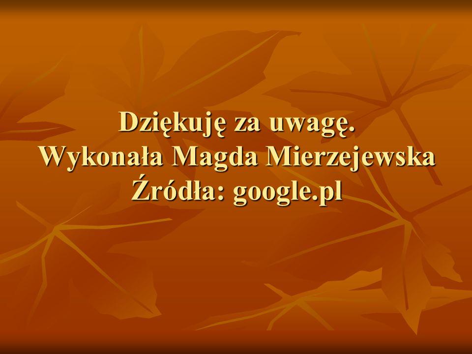 Dziękuję za uwagę. Wykonała Magda Mierzejewska Źródła: google.pl