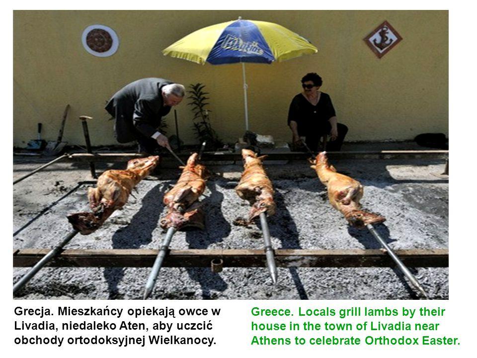 Grecja. Mieszkańcy opiekają owce w Livadia, niedaleko Aten, aby uczcić obchody ortodoksyjnej Wielkanocy.