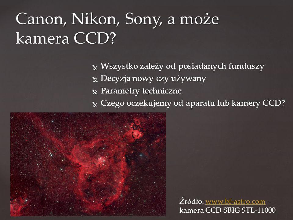 Canon, Nikon, Sony, a może kamera CCD