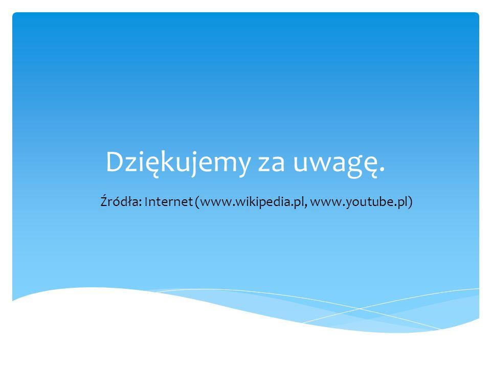 Źródła: Internet (www.wikipedia.pl, www.youtube.pl)