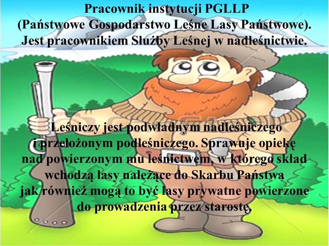 Pracownik instytucji PGLLP (Państwowe Gospodarstwo Leśne Lasy Państwowe). Jest pracownikiem Służby Leśnej w nadleśnictwie.