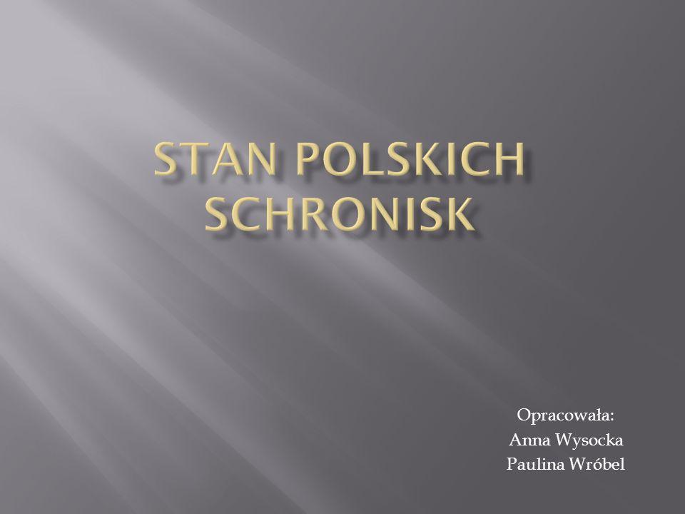 Stan polskich schronisk