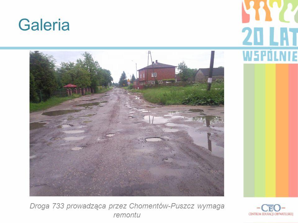 Droga 733 prowadząca przez Chomentów-Puszcz wymaga remontu