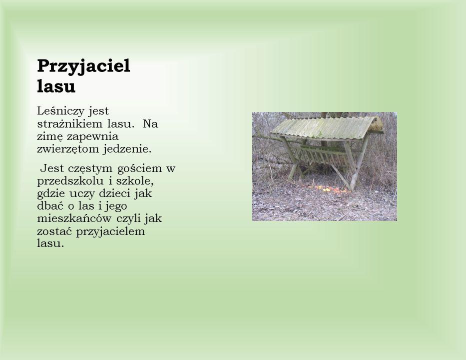 Przyjaciel lasu Leśniczy jest strażnikiem lasu. Na zimę zapewnia zwierzętom jedzenie.