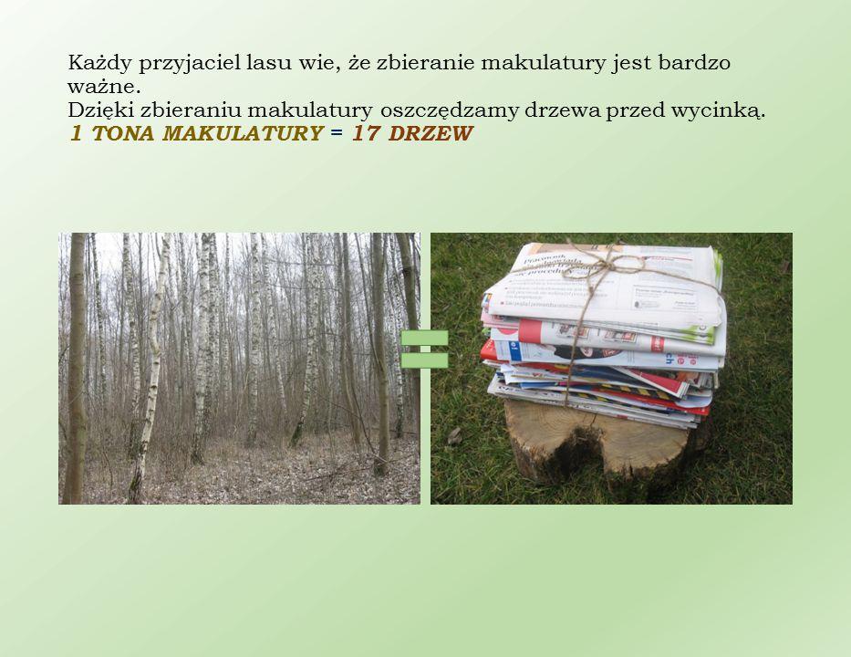 Każdy przyjaciel lasu wie, że zbieranie makulatury jest bardzo ważne