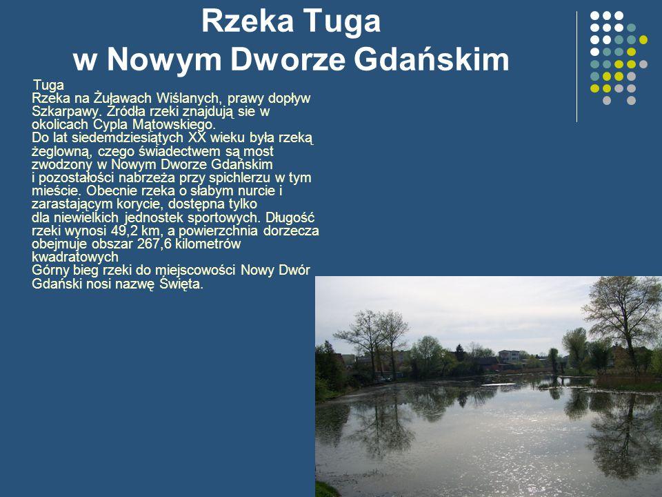 Rzeka Tuga w Nowym Dworze Gdańskim