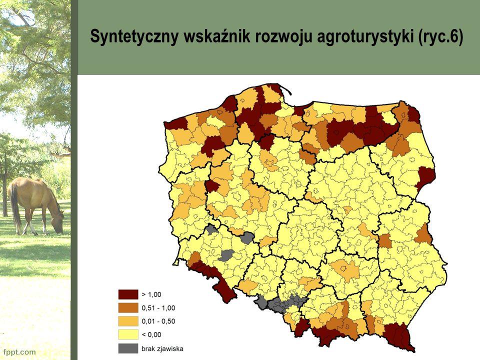Syntetyczny wskaźnik rozwoju agroturystyki (ryc.6)