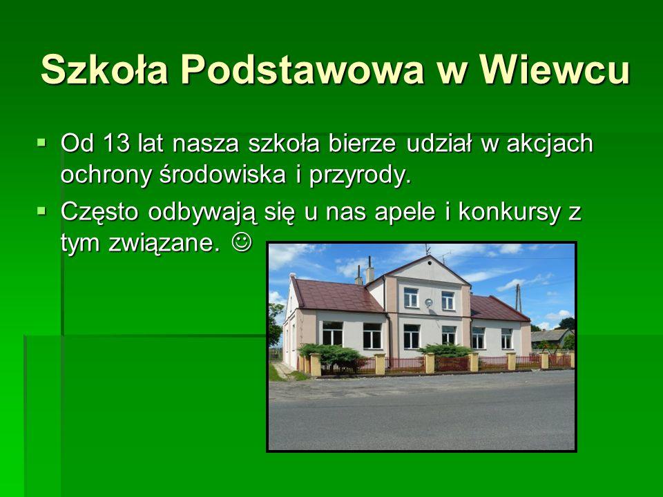 Szkoła Podstawowa w Wiewcu