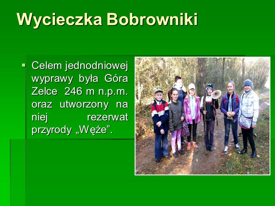 Wycieczka Bobrowniki Celem jednodniowej wyprawy była Góra Zelce 246 m n.p.m.