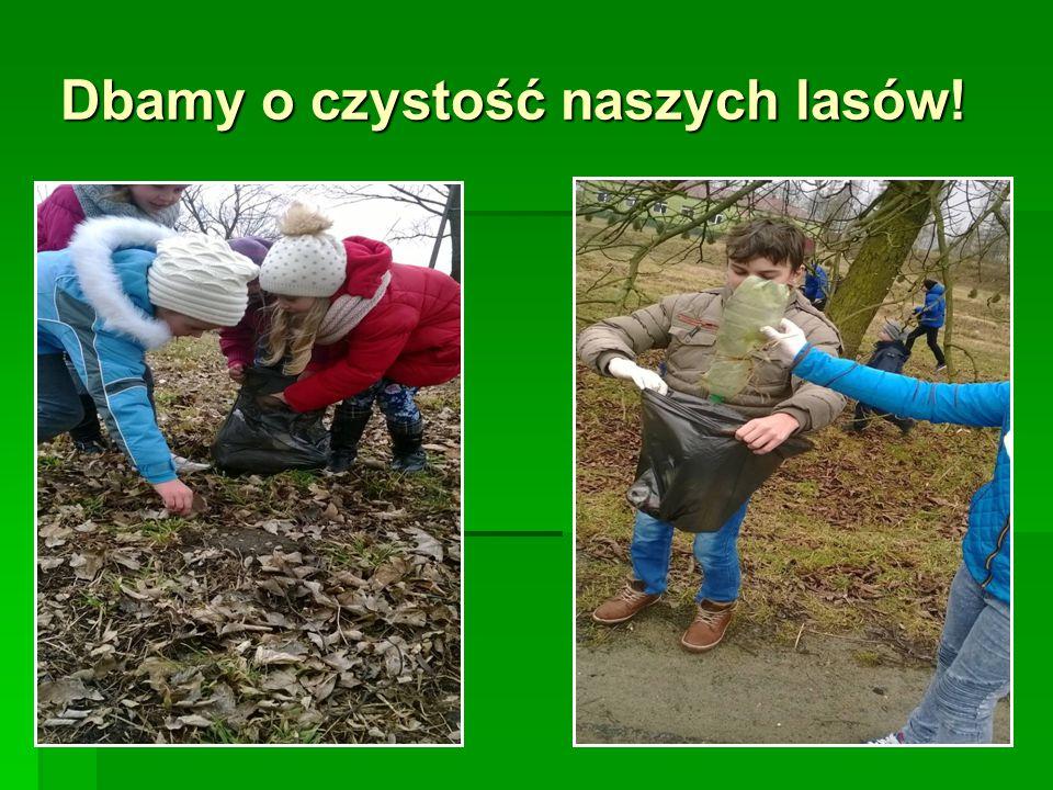 Dbamy o czystość naszych lasów!