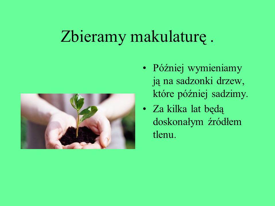 Zbieramy makulaturę . Później wymieniamy ją na sadzonki drzew, które później sadzimy.