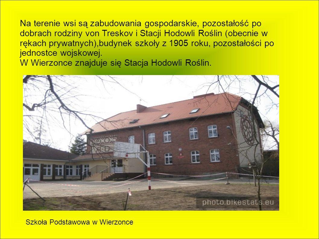 W Wierzonce znajduje się Stacja Hodowli Roślin.