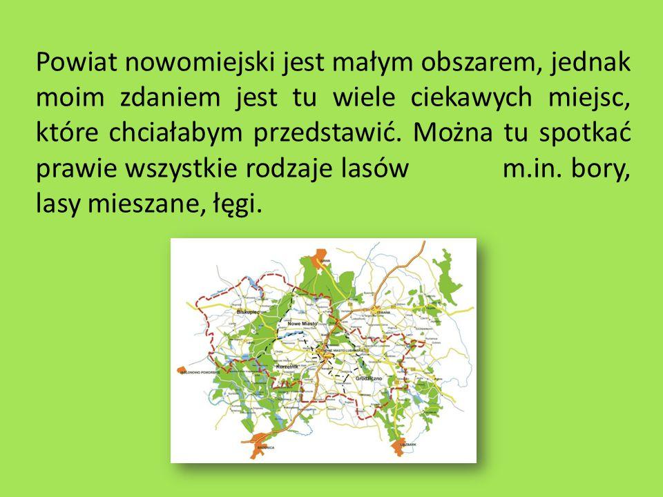 Powiat nowomiejski jest małym obszarem, jednak moim zdaniem jest tu wiele ciekawych miejsc, które chciałabym przedstawić.
