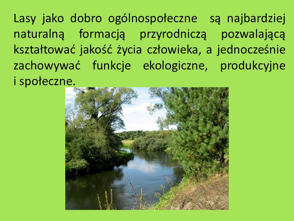 Lasy jako dobro ogólnospołeczne są najbardziej naturalną formacją przyrodniczą pozwalającą kształtować jakość życia człowieka, a jednocześnie zachowywać funkcje ekologiczne, produkcyjne i społeczne.