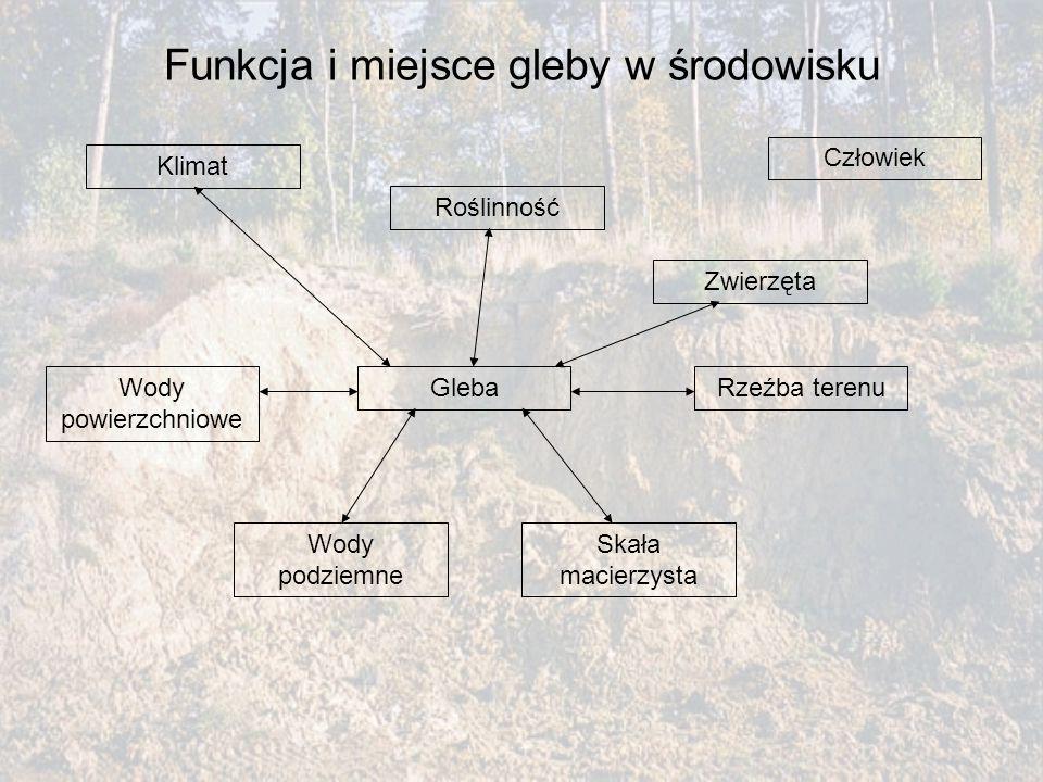 Funkcja i miejsce gleby w środowisku