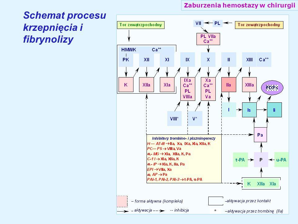 Schemat procesu krzepnięcia i fibrynolizy