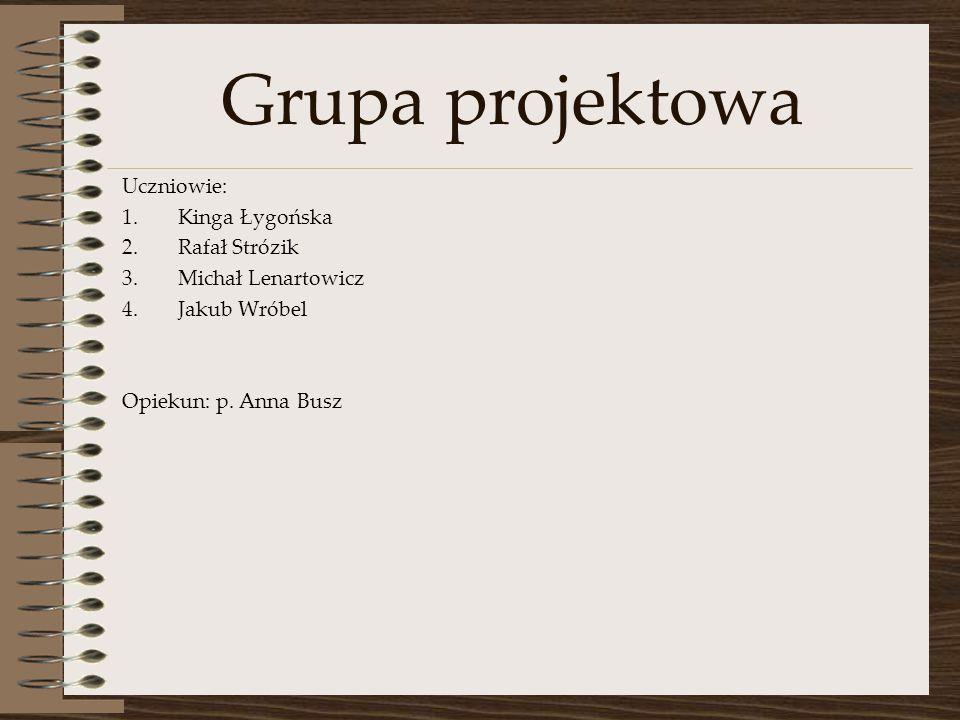 Grupa projektowa Uczniowie: Kinga Łygońska Rafał Strózik