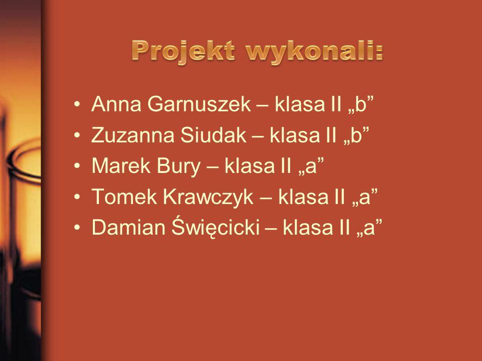 """Projekt wykonali: Anna Garnuszek – klasa II """"b"""