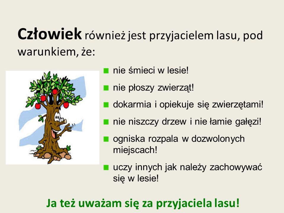 Ja też uważam się za przyjaciela lasu!