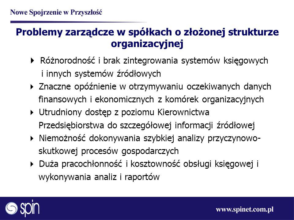 Problemy zarządcze w spółkach o złożonej strukturze organizacyjnej