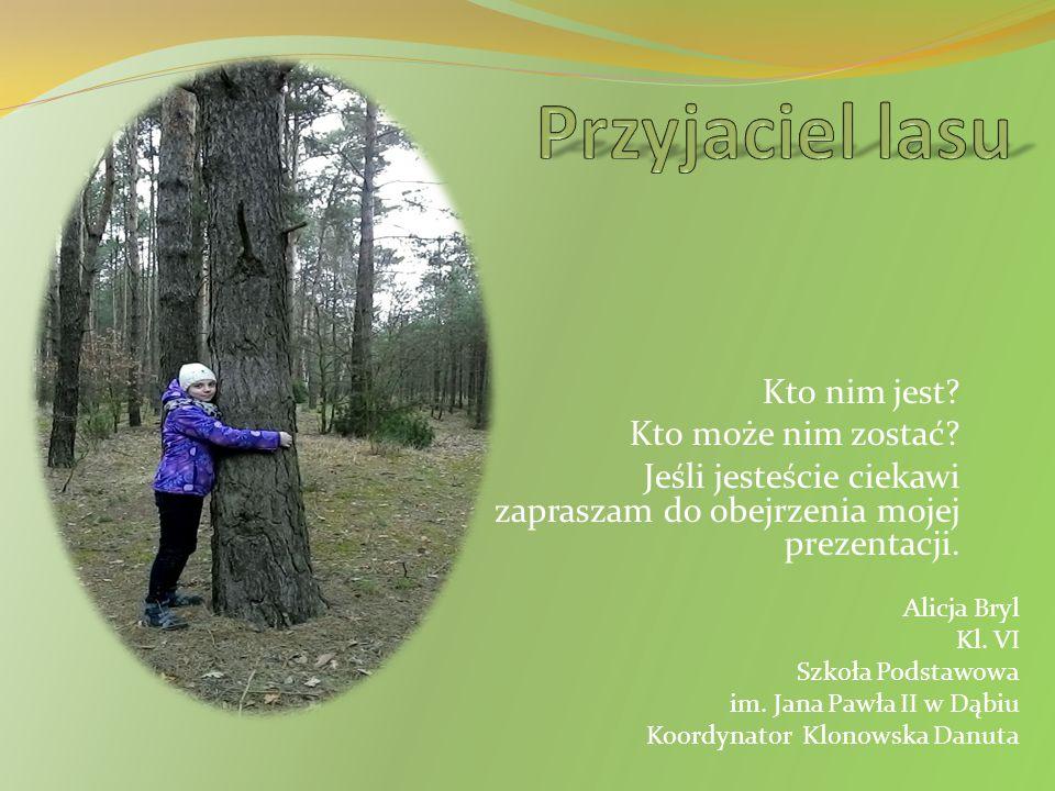 Przyjaciel lasu Kto nim jest Kto może nim zostać