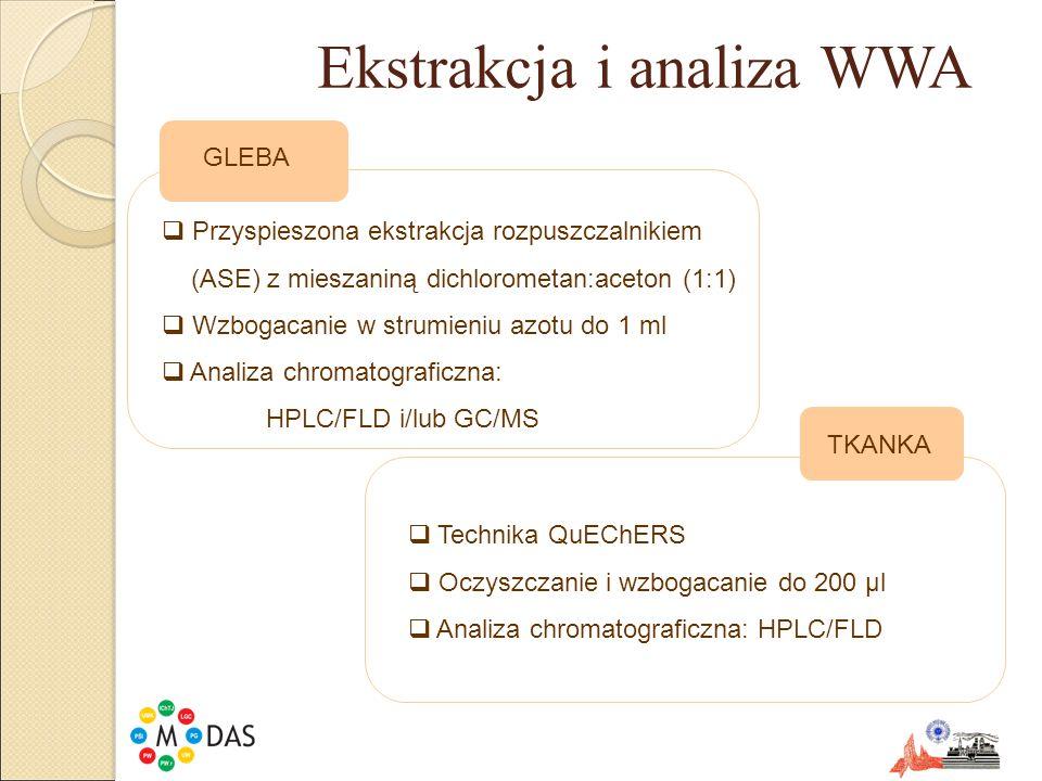 Ekstrakcja i analiza WWA