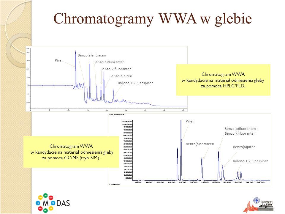Chromatogramy WWA w glebie