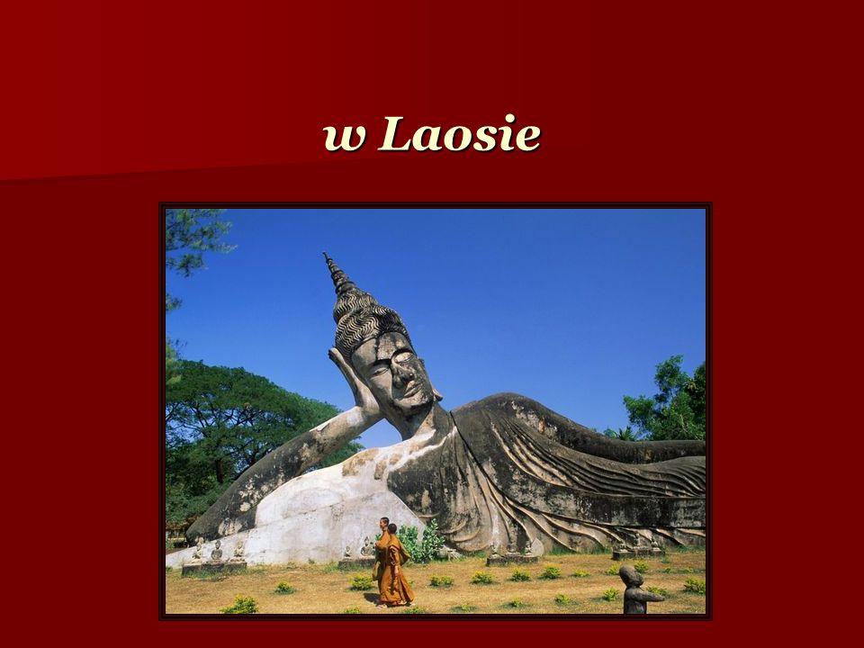 w Laosie