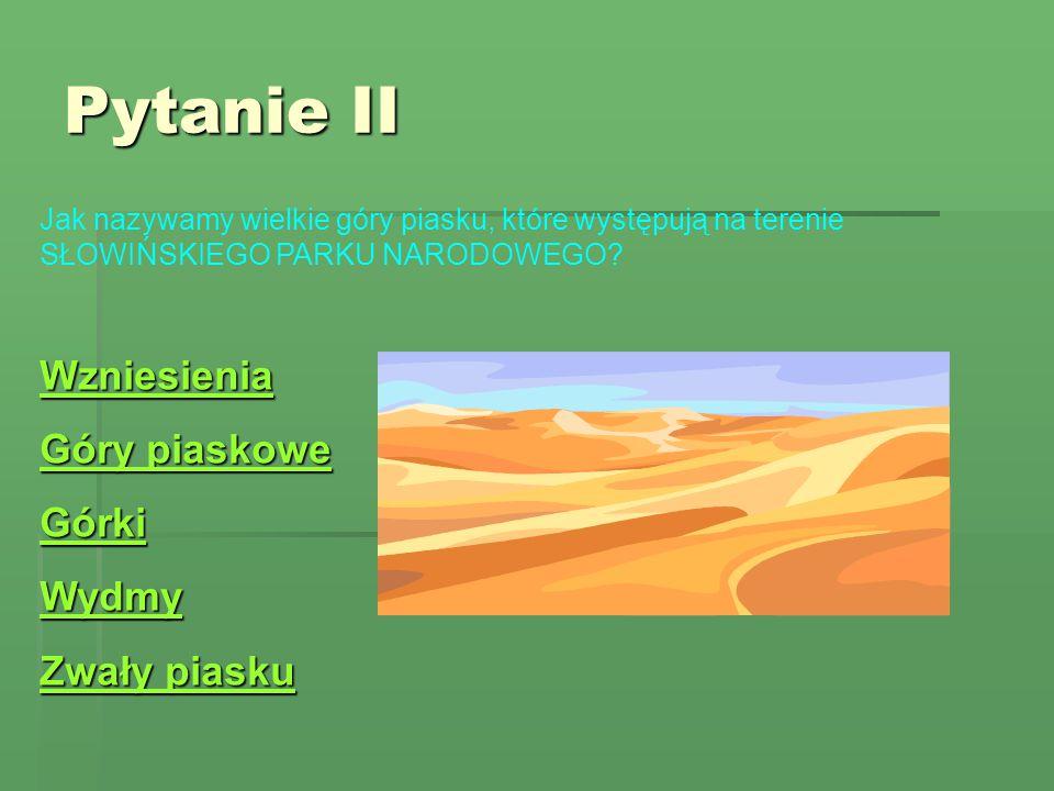 Pytanie II Wzniesienia Góry piaskowe Górki Wydmy Zwały piasku