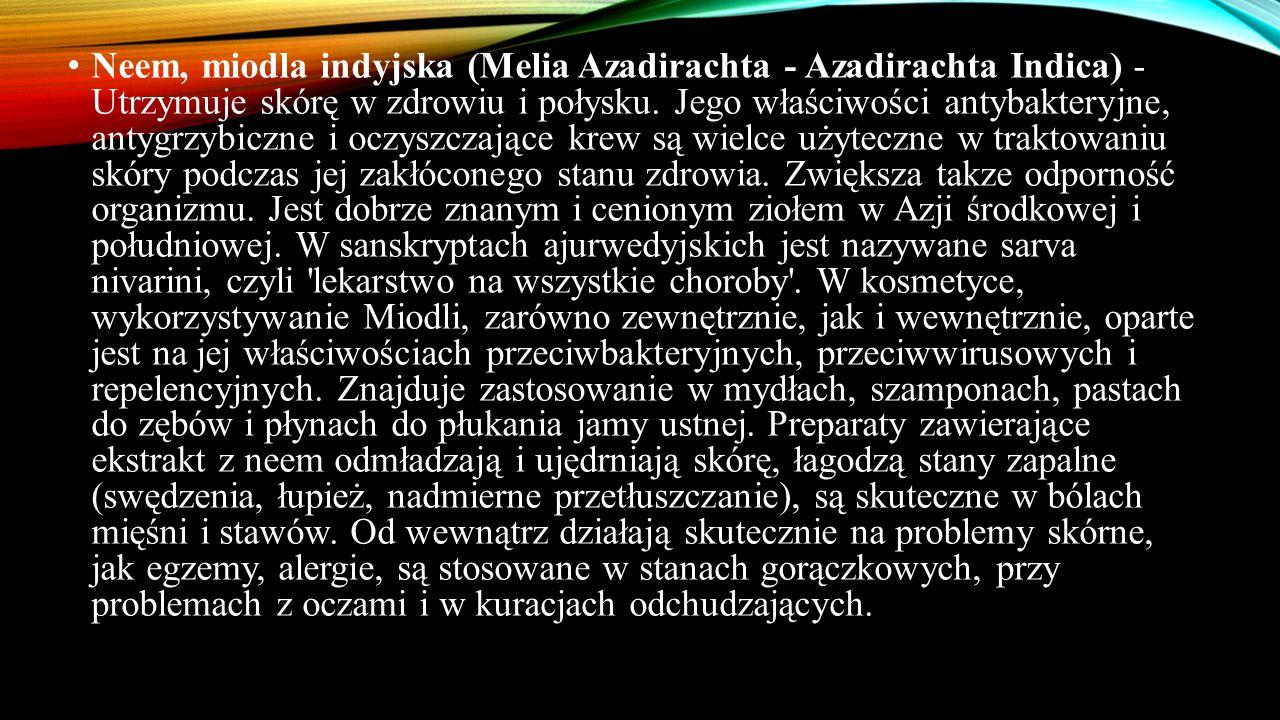 Neem, miodla indyjska (Melia Azadirachta - Azadirachta Indica) - Utrzymuje skórę w zdrowiu i połysku.