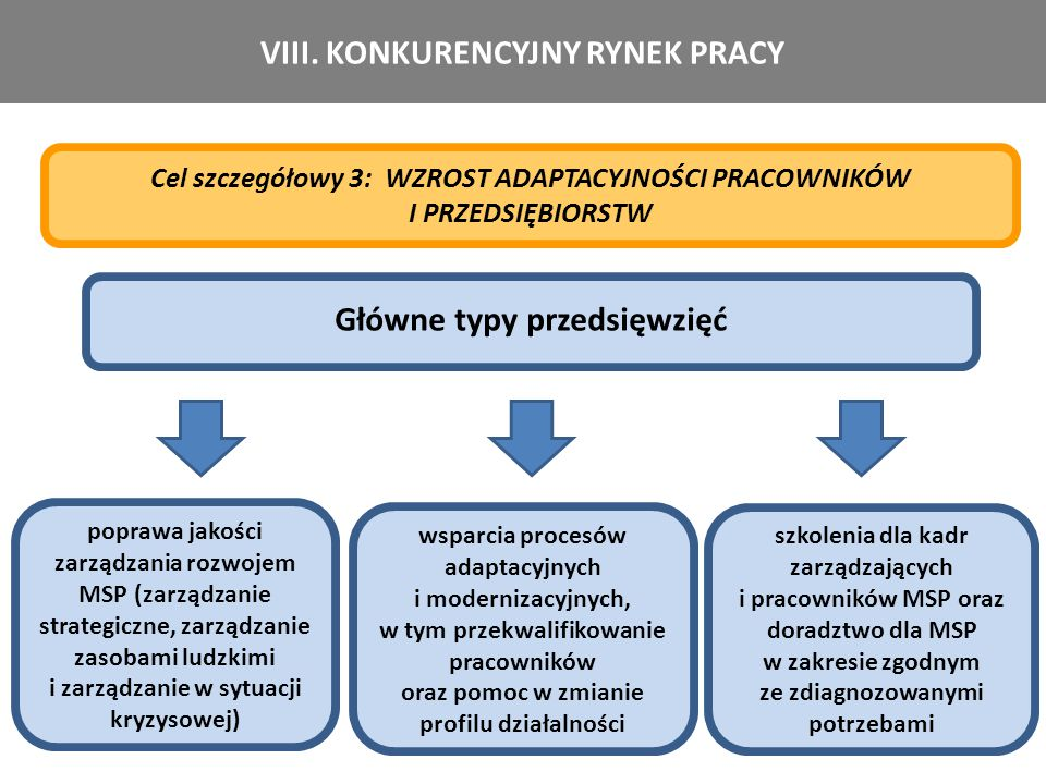 VIII. KONKURENCYJNY RYNEK PRACY Główne typy przedsięwzięć