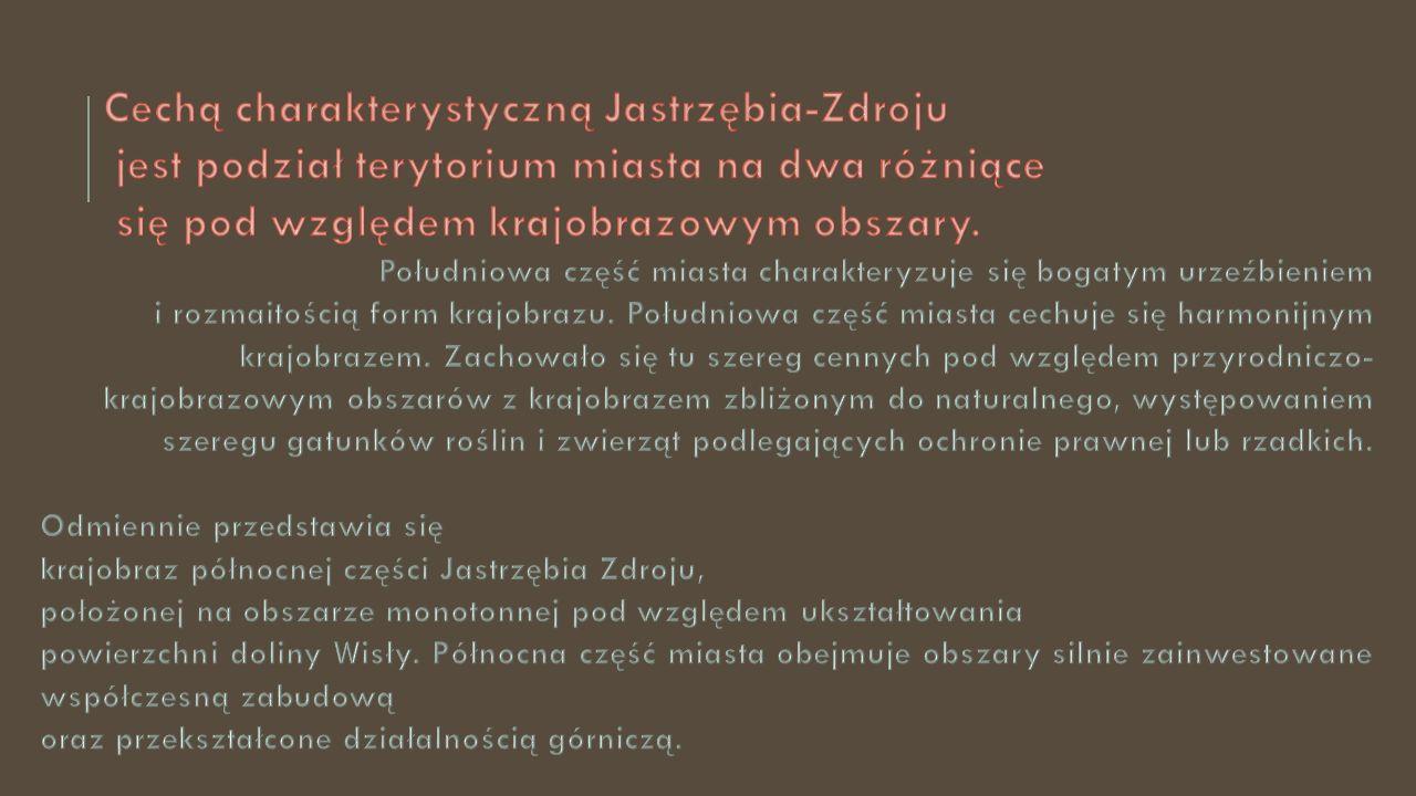Cechą charakterystyczną Jastrzębia-Zdroju