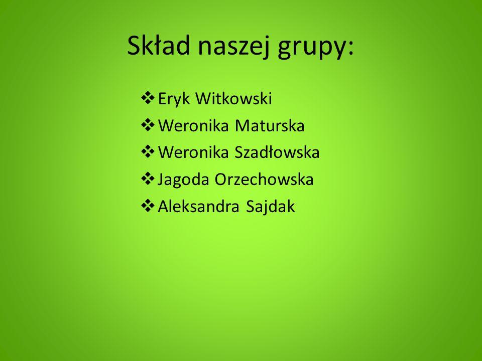 Skład naszej grupy: Eryk Witkowski Weronika Maturska
