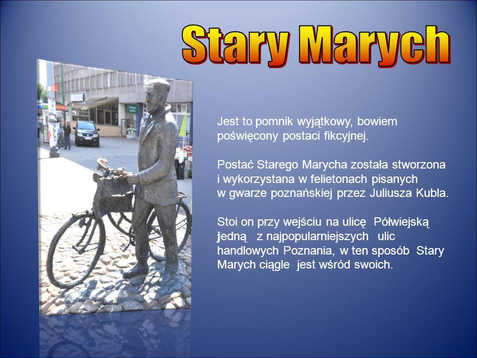 Stary Marych Jest to pomnik wyjątkowy, bowiem poświęcony postaci fikcyjnej.