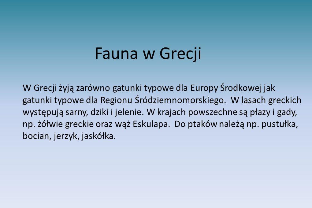 Fauna w Grecji