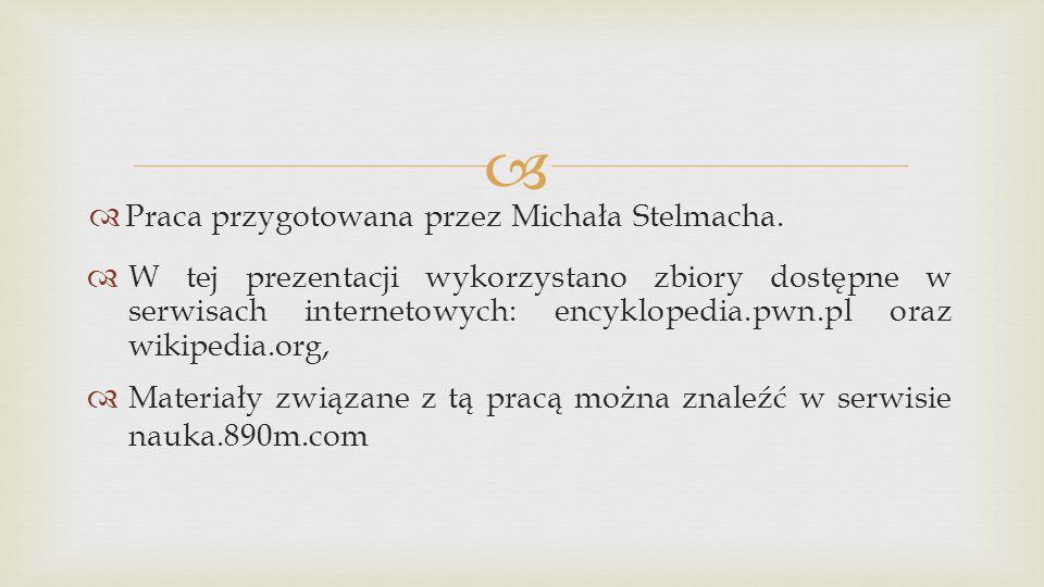Praca przygotowana przez Michała Stelmacha.