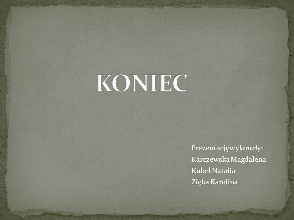 KONIEC Prezentację wykonały: Karczewska Magdalena Kubeł Natalia Zięba Karolina