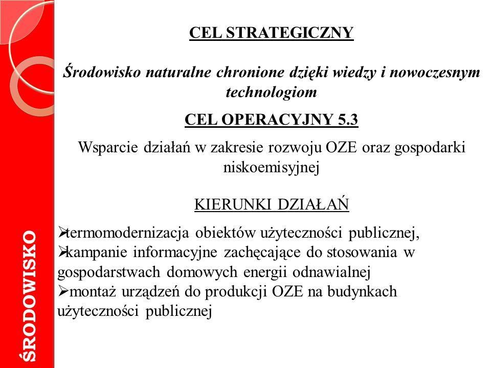 Wsparcie działań w zakresie rozwoju OZE oraz gospodarki niskoemisyjnej
