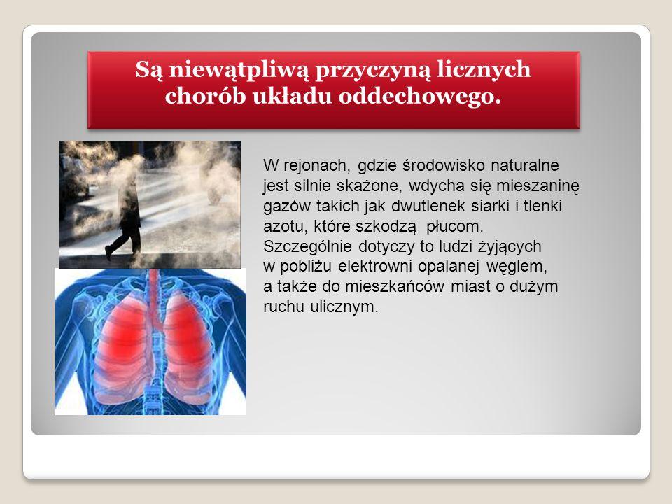 Są niewątpliwą przyczyną licznych chorób układu oddechowego.